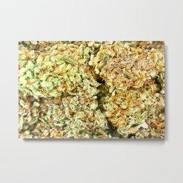 Dedicated Medicator pt.1 (LSD strain) Metal Print