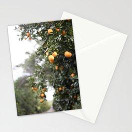 Ojai Oranges Stationery Cards