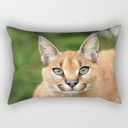 Fantastic Graceful Lynx Attentive Close Up Ultra HD Rectangular Pillow