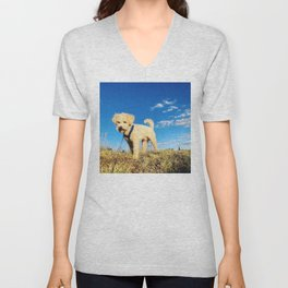 Maltipoo, meet clear blue Peruvian sky Unisex V-Neck