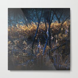 Swampy Field Forest Metal Print