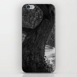 Crooked Oak (black and white) iPhone Skin