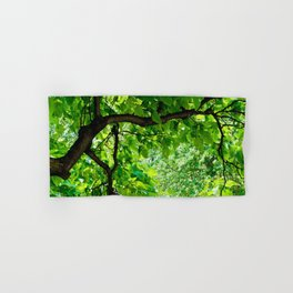 Peek into the Summer Trees Hand & Bath Towel