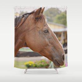 Nick Shower Curtain