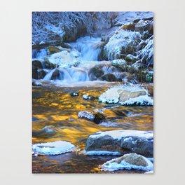 Copper Waters By Luke Nielson Canvas Print