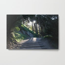 Land's End - Wild Veda Metal Print