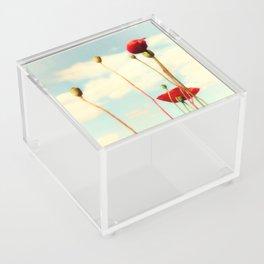 Lost Poppies Acrylic Box