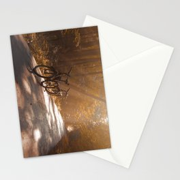Morning Autumn Forest Stationery Cards