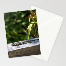Hide Right Here Stationery Cards