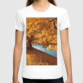 Perfect Autumn (Color) T-shirt