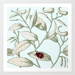 Noli me tangere- ladybird on leaf Art Print