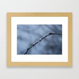 Icebender Framed Art Print