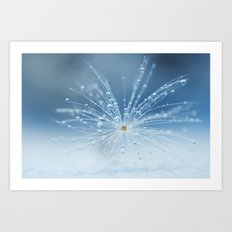 Star of drops Art Print