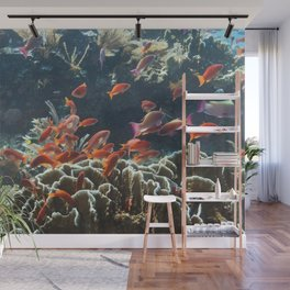 Orange school of Anthias Wall Mural