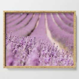 Lavender Happiness Serving Tray