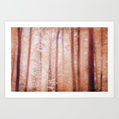 into the woods 14 Art Print