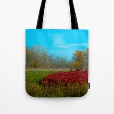 Winter is quickly approching. Tote Bag