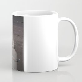 Burn In the Sand Coffee Mug