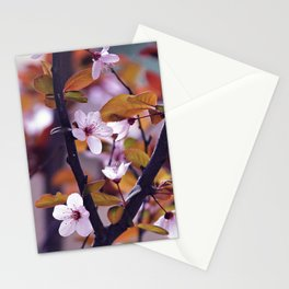 Cherry Blossom 2 Stationery Cards