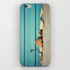 Beach Hut Stones iPhone & iPod Skin