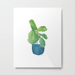 Fiddle Leaf Fig Metal Print