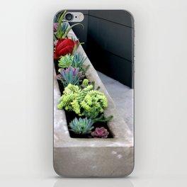 Linear Succulence iPhone Skin