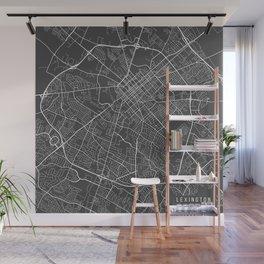 Lexington Map, USA - Gray Wall Mural