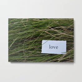 Love in the grass Metal Print