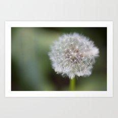 Dandelion Parachute Ball Art Print