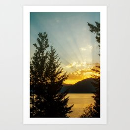 golden rays Art Print