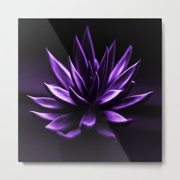 Succulent Plant In Purple Color #decor #society6 #homedecor Metal Print