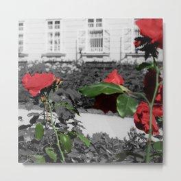 Roses, Color on B/W 3 Metal Print