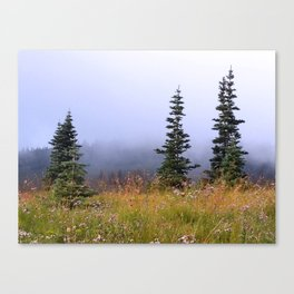 High Upon A Mountain Canvas Print
