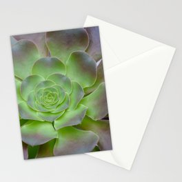 Hens and chicks cactus Stationery Cards