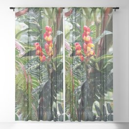 Tropical Heliconia Flowers 03 Sheer Curtain