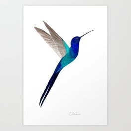 Swallow-tailed Hummingbird Art Print