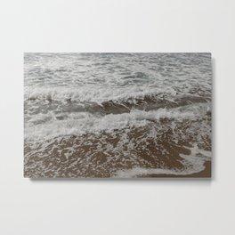 Rudy Metal Print