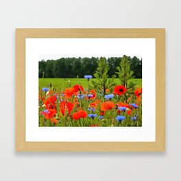 Poppies And Cornflowers Framed Art Print