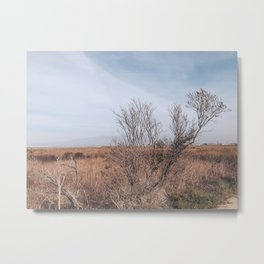 BLUE MOON VI / Alviso, California Metal Print