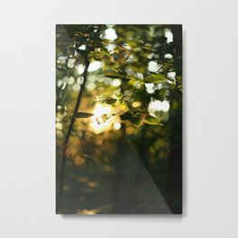 Light Metal Print
