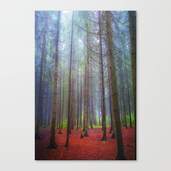 Back to the forest Canvas Print