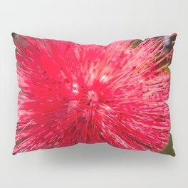 Bottlebrush Pillow Sham