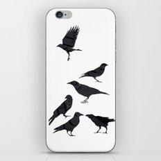 kargalar (crows) iPhone & iPod Skin