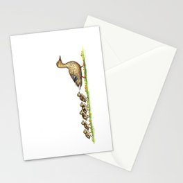 Ducks in a Row Stationery Cards