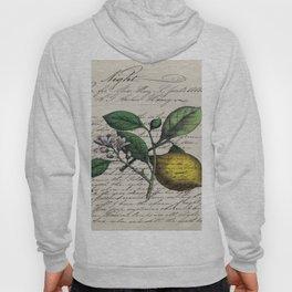 vintage Mediterranean summer fruit orchard citrus blossom yellow lemon Hoody