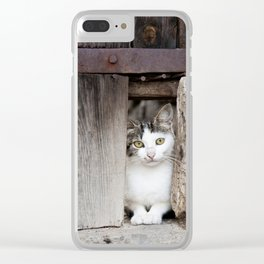 Cute kitten looking from behind a wooden fence. Clear iPhone Case