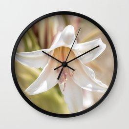 Moore's Crinum Flower Wall Clock