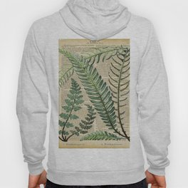 Book Art Page Botanical Leaves Hoody