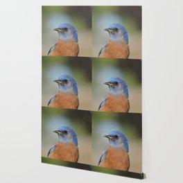 Bluebird in La Verne Wallpaper