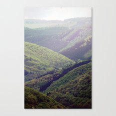 wooden valley. Canvas Print